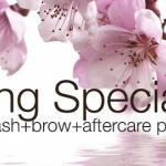 Eyelash Extension Spring Specials 2015