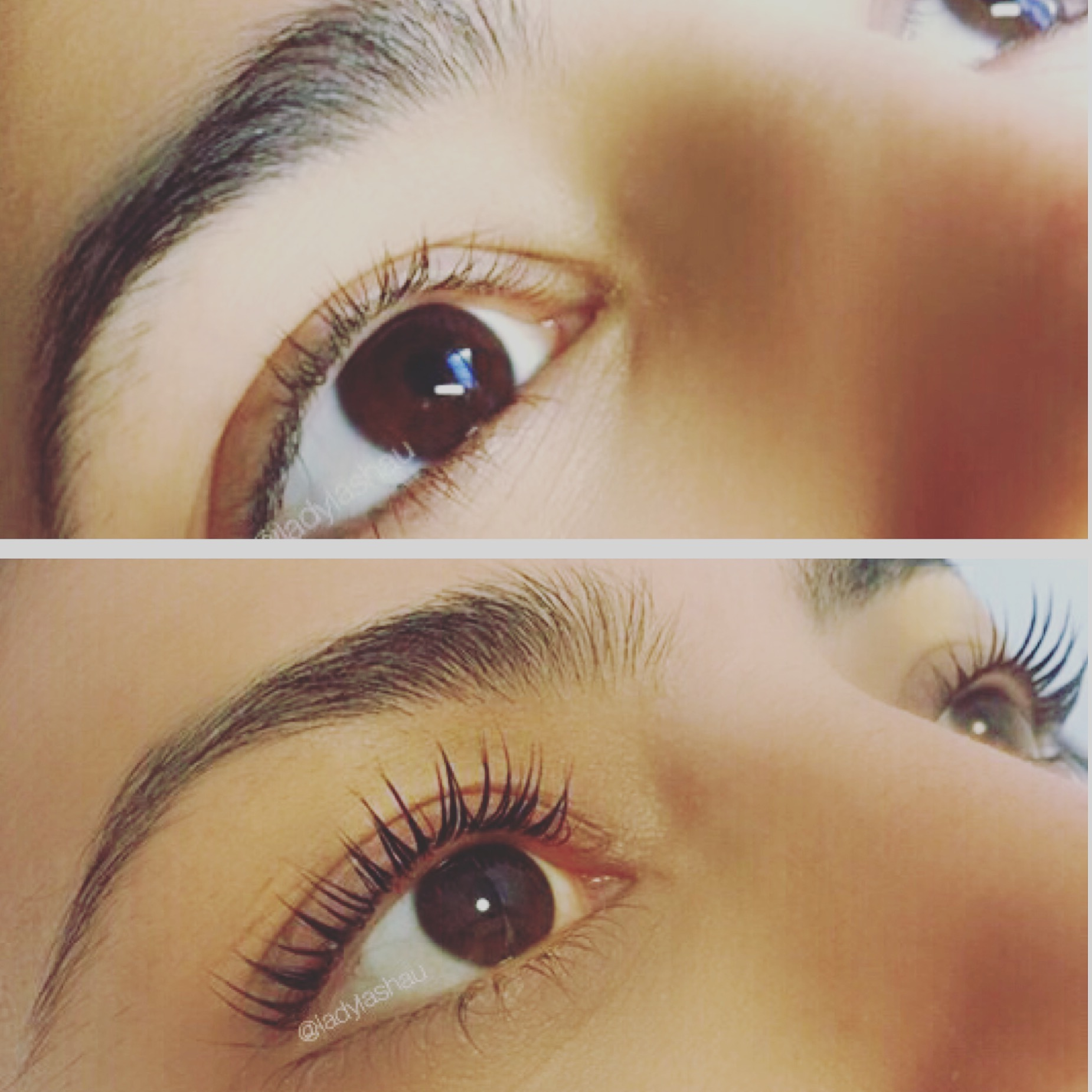 Lash Lift Eyelash Extensions Sydney Lady Lasheyelash Extensions