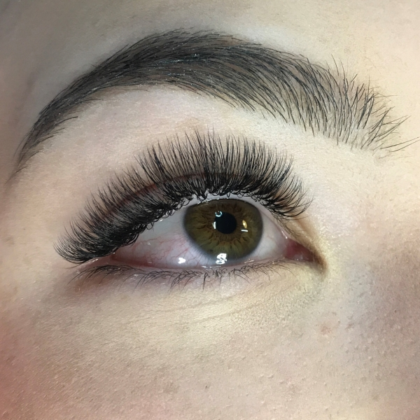 Volume Eyelash Extensions Xd Volume Lasheseyelash Extensions