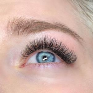 Volume Eyelash Extensions 24