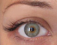 Half Set Eyelash Extensions Gallery