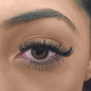 Volume Eyelash Extensions 16